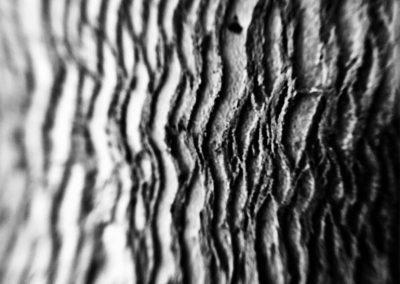 Inspire-Textures-10